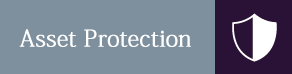 Shield Icon - Attorney Services